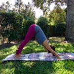 Downward Facing Dog Aiyana Fraley Yoga Instructor